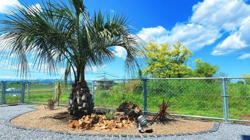 椰子とロックガーデンがとっても素敵な。リゾート風ガーデンを施工!